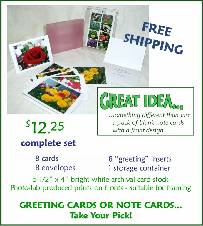 Joyces choices note cards greeting cards each set contains 8 cards with 8 envelopes also there are 8 inserts of heavy weight paper matching the white interior with text greetings for birthday m4hsunfo